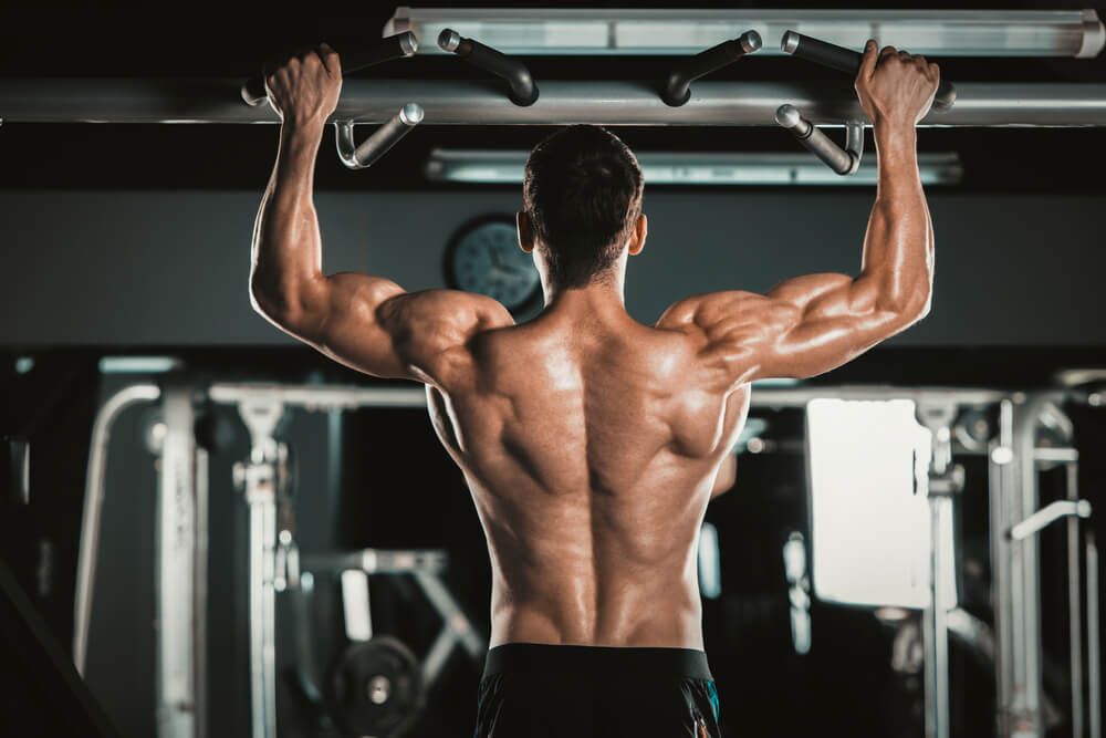 Best Gym Machines for Building Muscle